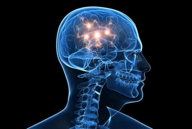 Шизофрения появилась впроцессе эволюции человеческого мозга