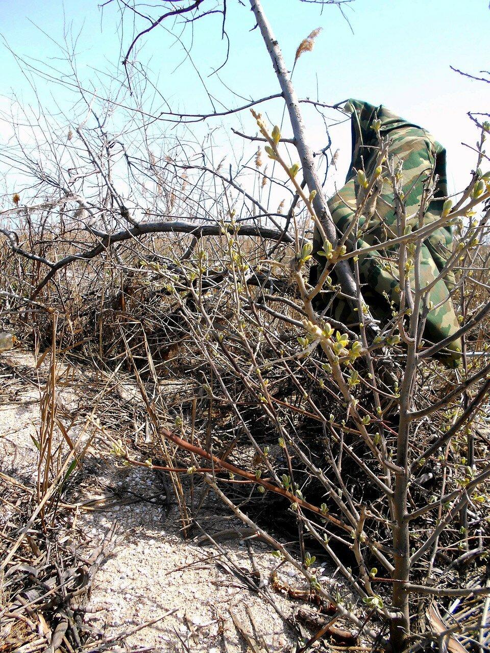 В походе апрельском, на Природе, Азовское побережье ... DSCN5072.JPG