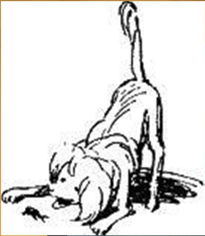 Иллюстрация В. Н. Горяева к пр-ю М.Твена Приключения Тома Сойера (14).jpg