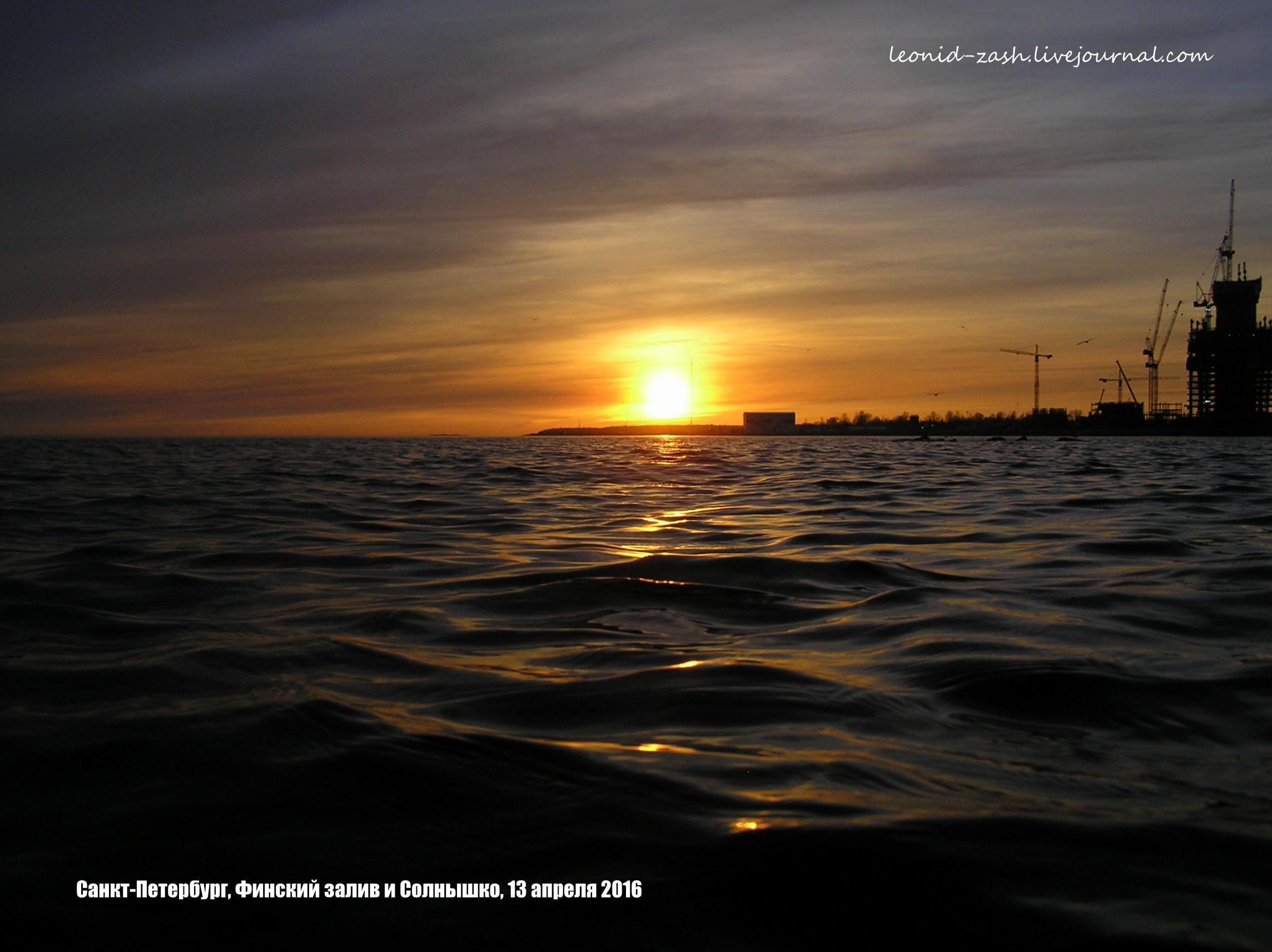 Финский залив 36.JPG