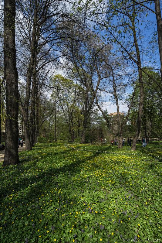 Ботанический сад МГУ. Аптекарский Огород.