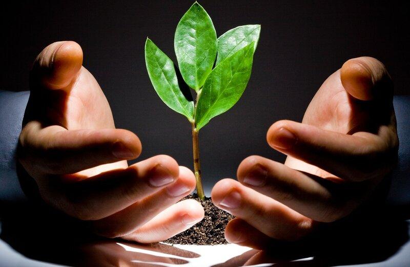 важность инвестиций в персонал