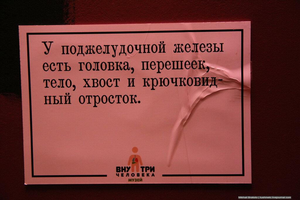 IMG_4211.jpg