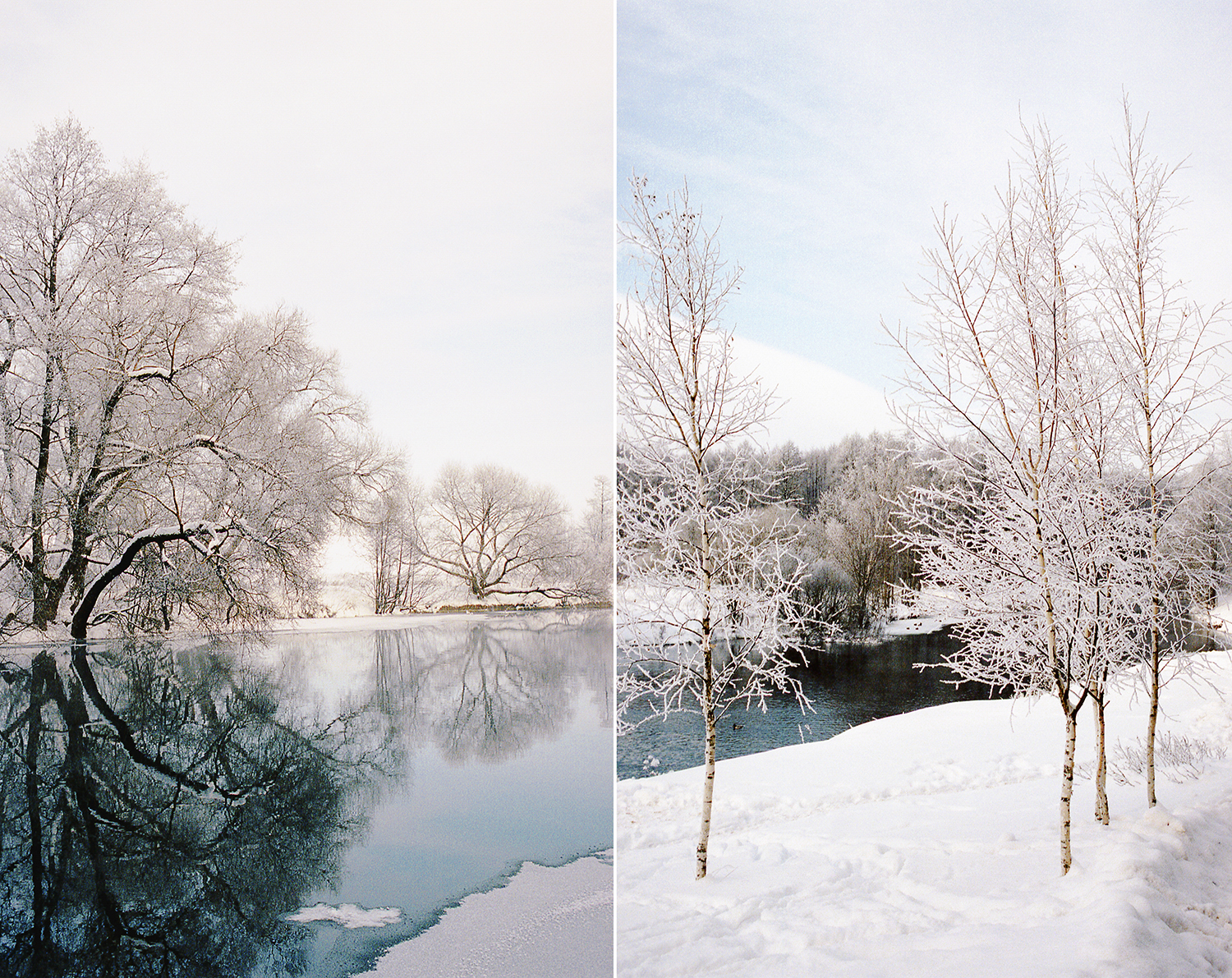 winter beauty37.jpg