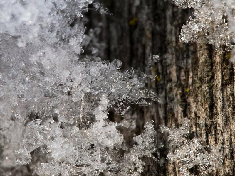 Снежинки макро