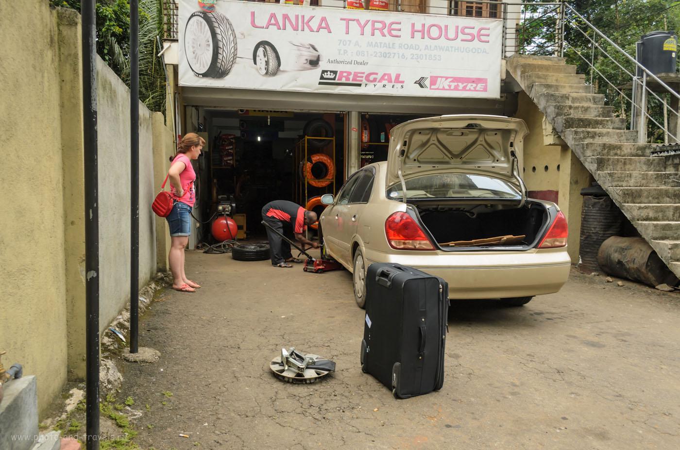 Фото 1. Как мы узнали цены на услуги шиномонтажа на Шри-Ланке. Отчет об экскурсии на гору Сигирия самостоятельно. Камера Nikon D5100 KIT 18-55.