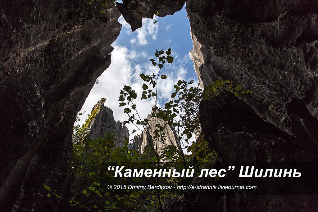 """""""Каменный лес"""" Шилинь."""