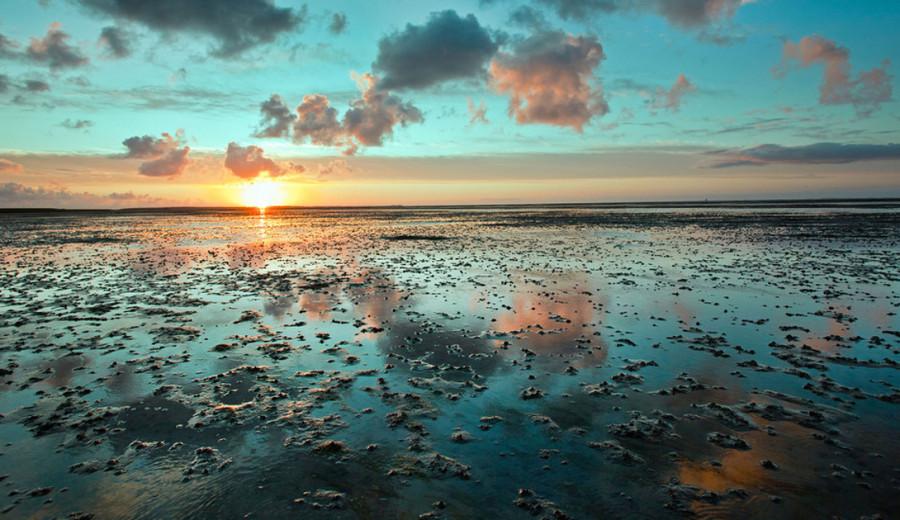 3. Ваттовое море, Акватория Северного моря Здесь встречаются десятки мелководных морских участков, и