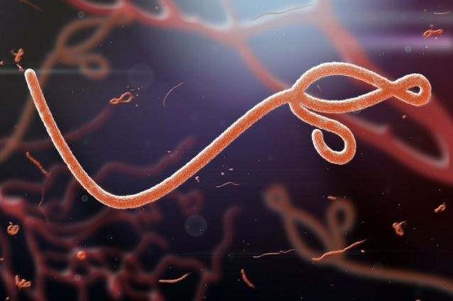 ВЧехии задержаны подозреваемые впопытке распространения Эболы