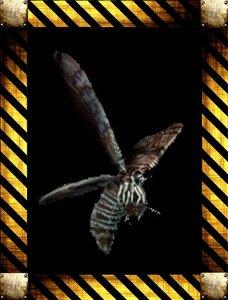 Враги Resident Evil Code: Veronica 0_154bbd_f595cb48_M