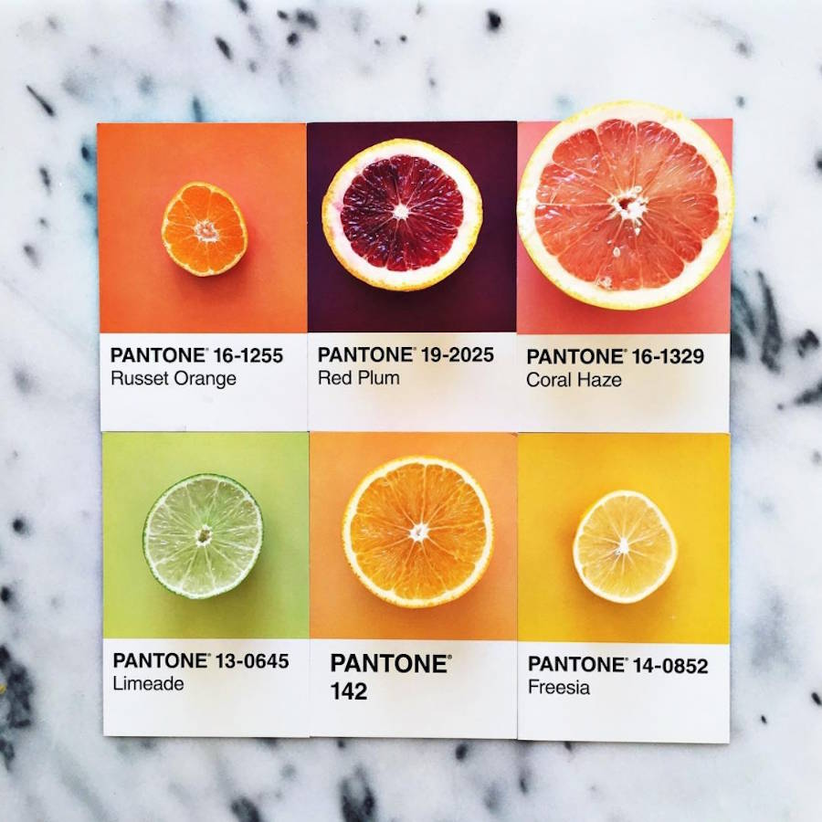 Gourmet and Colorful Pantone Food Series