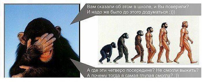 obz.jpg