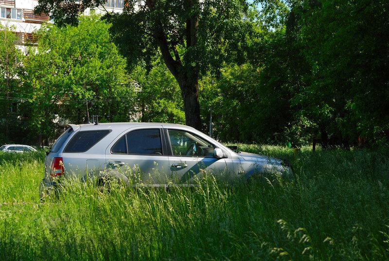 Среди полей московских улиц