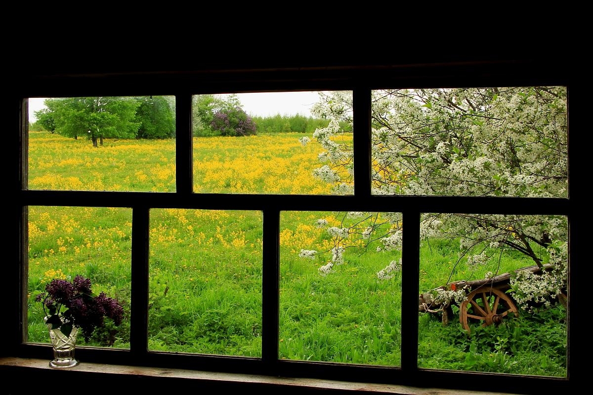 Весеннее окно