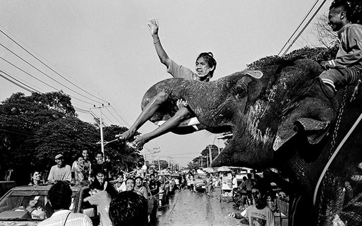 13. Слон схватил уличного продавца во время празднования тайского Нового года.