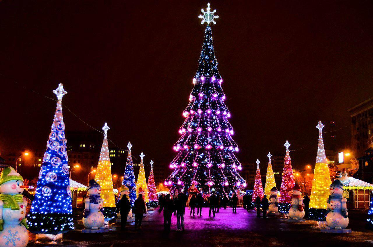 Новогодняя красавица, Харьков
