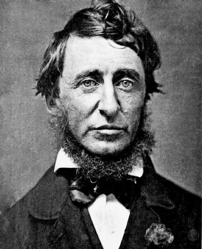 Генри Торо Henry_David_Thoreau.jpg