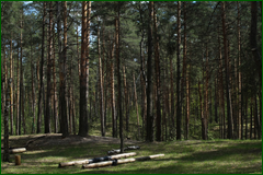 http://img-fotki.yandex.ru/get/27836/15842935.2ed/0_e3bcc_a432c9fd_orig.png