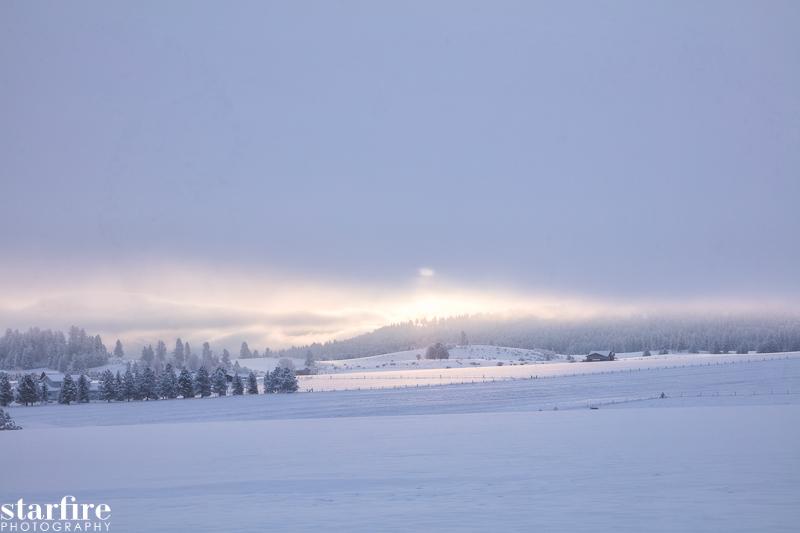 Зима / фото David Martin