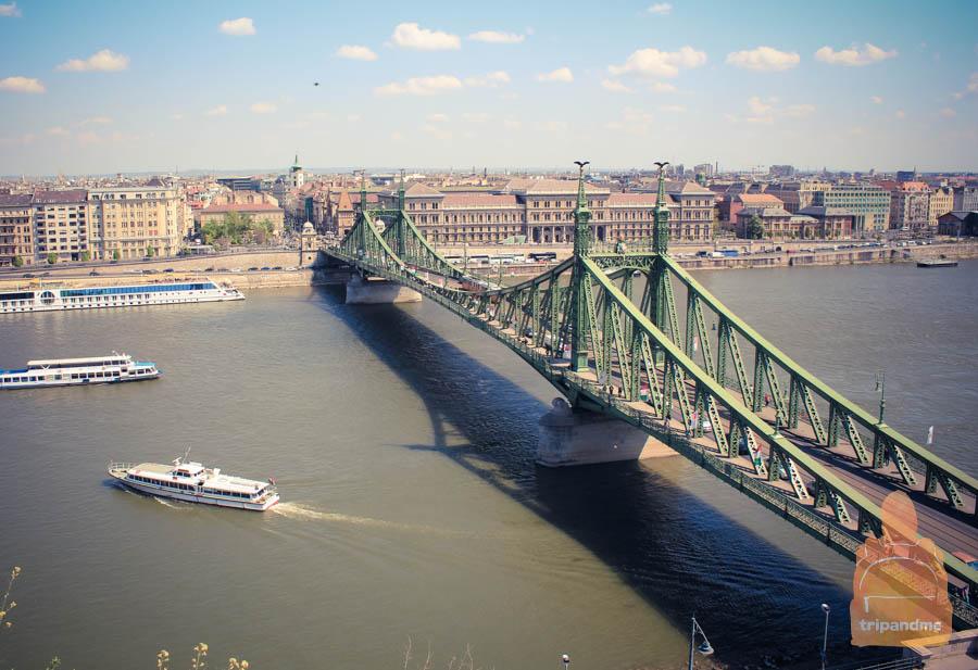 Мост Свободы покрашен в зеленый цвет