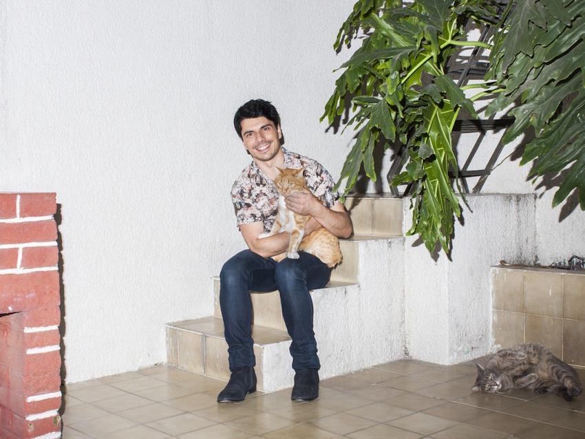 «Коты — это настоящий дзен. Жить в Мехико и делить этот город более чем с 20 миллионами жителей дово