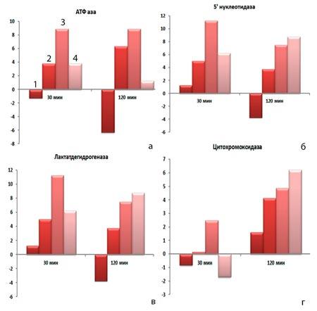 Действие КФС «ЖИВАЯ ВОДА» на ферментативную активность клеток врожденного иммунитета