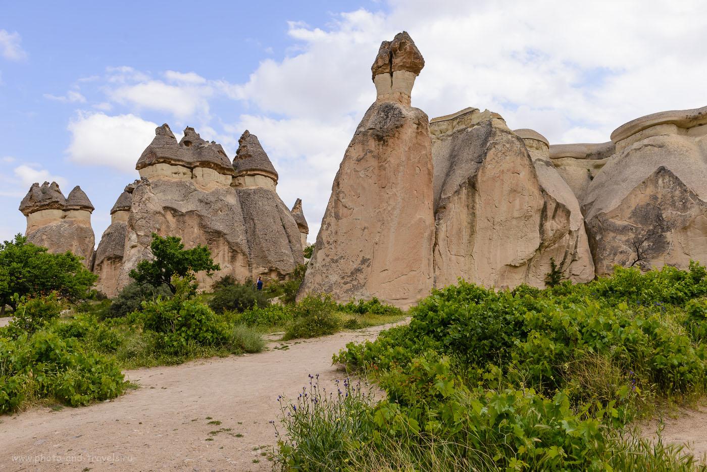 Фото 6. Красоты долины Paşabağ. Отзывы туристов об отдыхе в Турции самостоятельно. Фотоаппарат Nikon D610, объектив Nikon 24-70mm f/2.8. Параметры съемки: 1/500, -0.33, 8.0, 160, 26 мм.