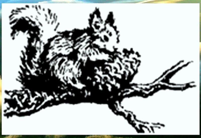 Иллюстрация к книге В.К.Арсеньева Дерсу Узала (22).jpg
