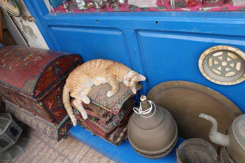 Эссуэйра - спящий кот