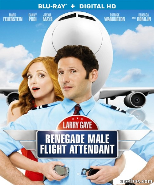 Ларри Гэй: Стюард-отступник / Larry Gaye: Renegade Male Flight Attendant (2015/BDRip/HDRip)