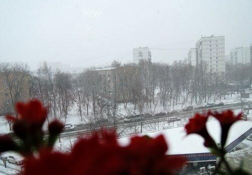 https://img-fotki.yandex.ru/get/27964/184459687.139/0_14fe8d_e06e1ee6_L.jpg