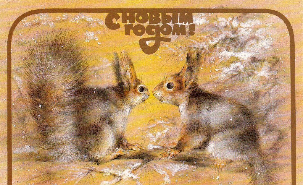 Картинка, белка советские открытки