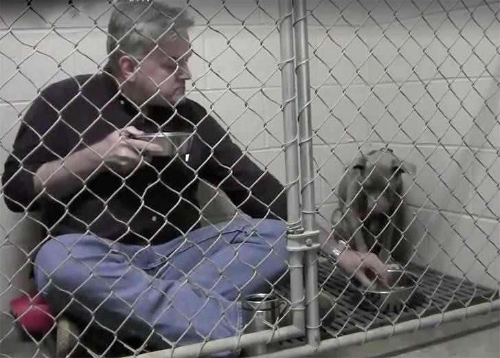 Ветеринар ел в одном вольере с собакой, чтобы спасти ей жизнь (6 фото)