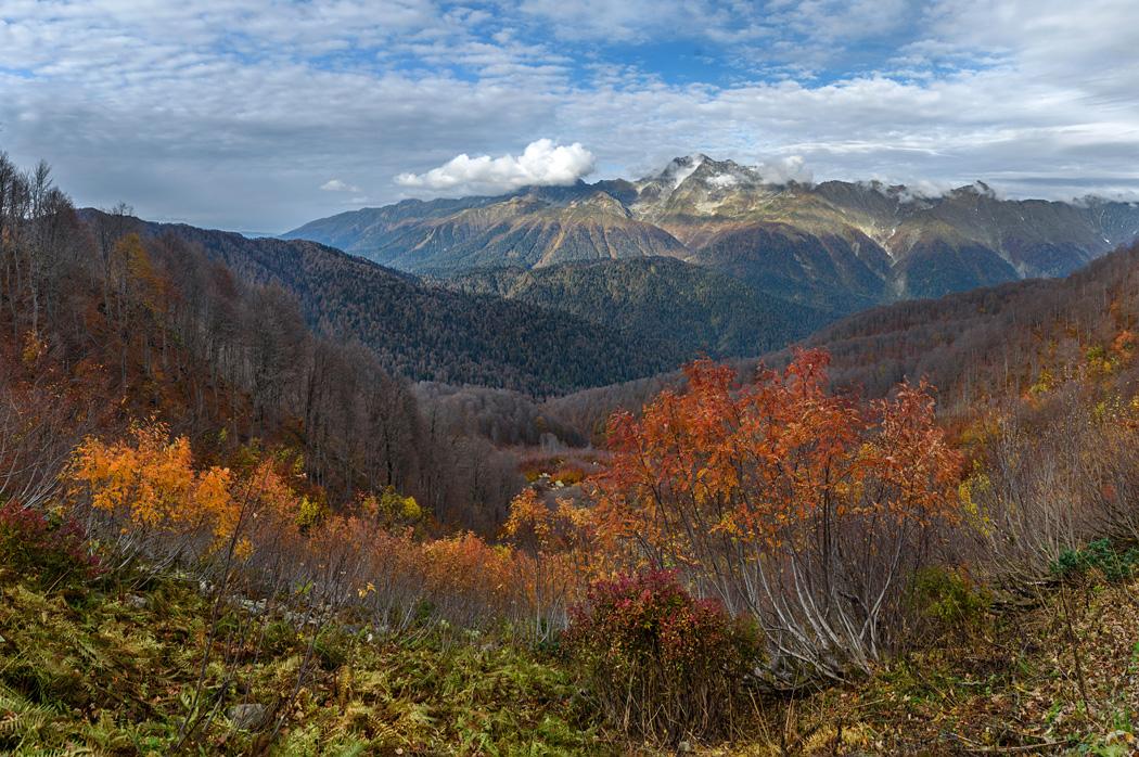 Осень на массиве Ачишхо, Красная Поляна
