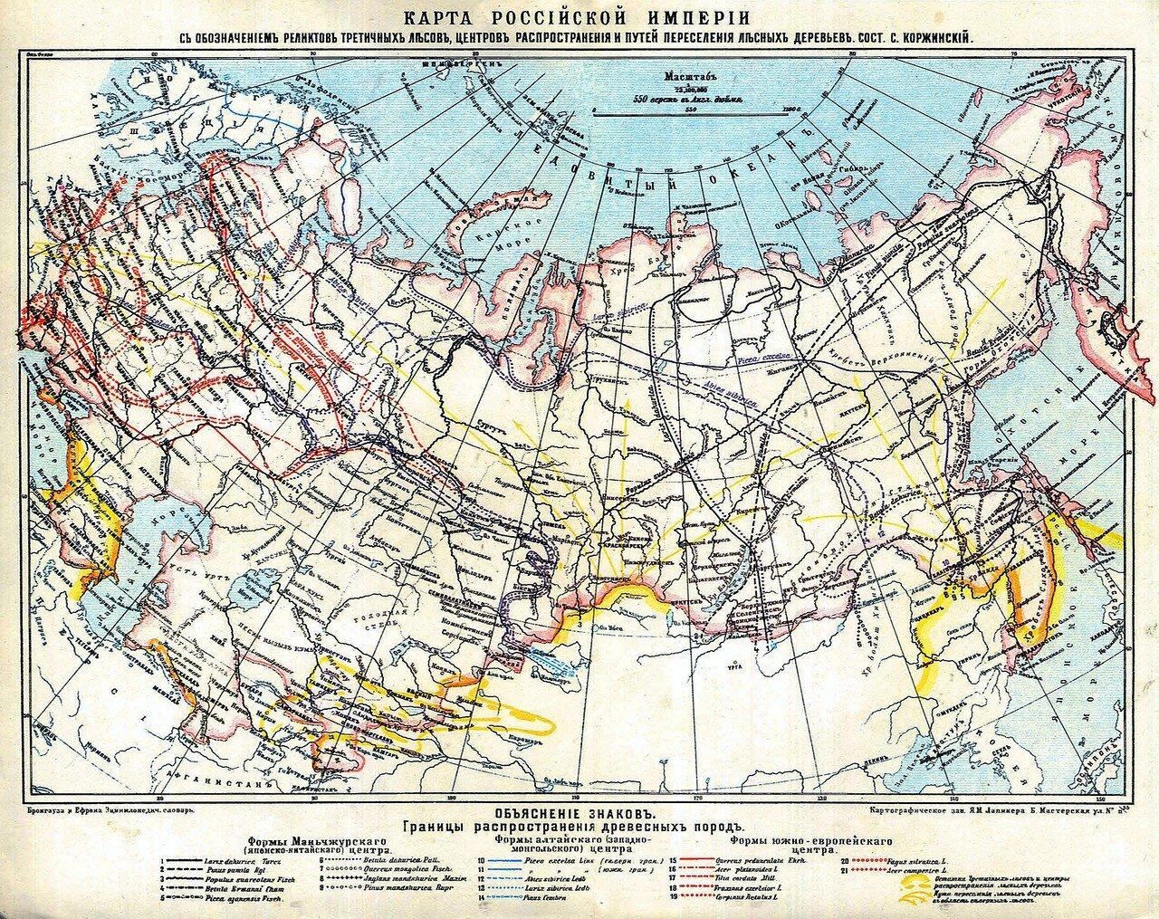 21. Карта распространения древесных пород (реликтовые леса)