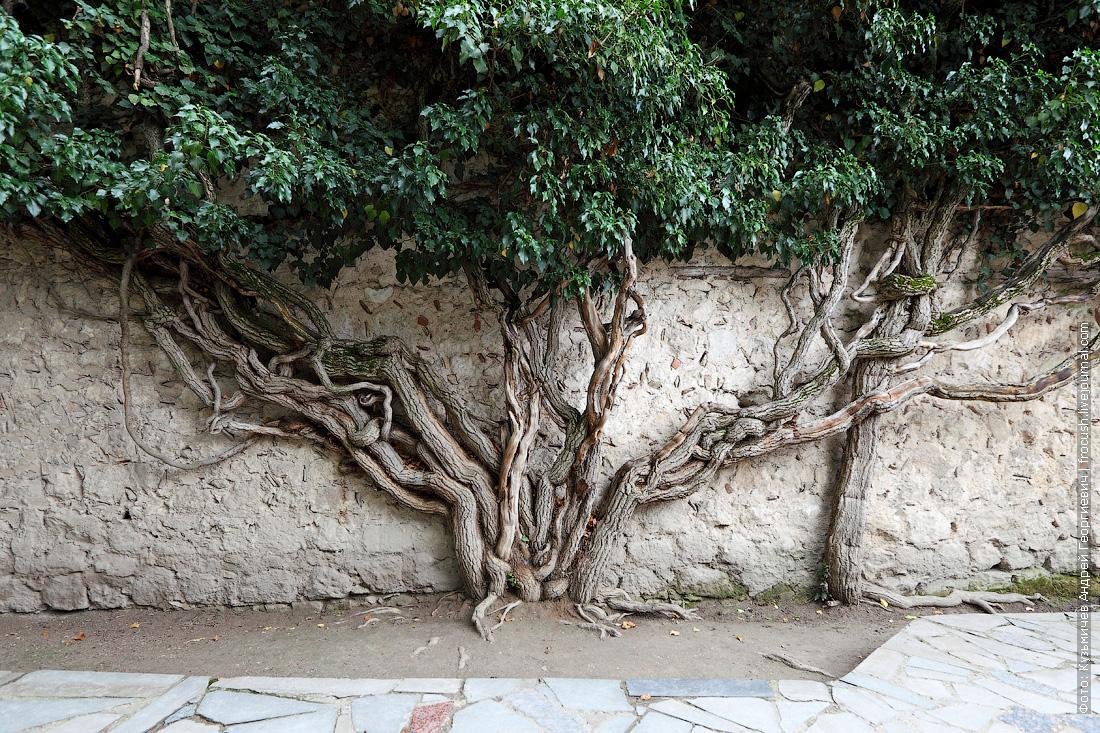 портал Демир-Капы Ханский дворец