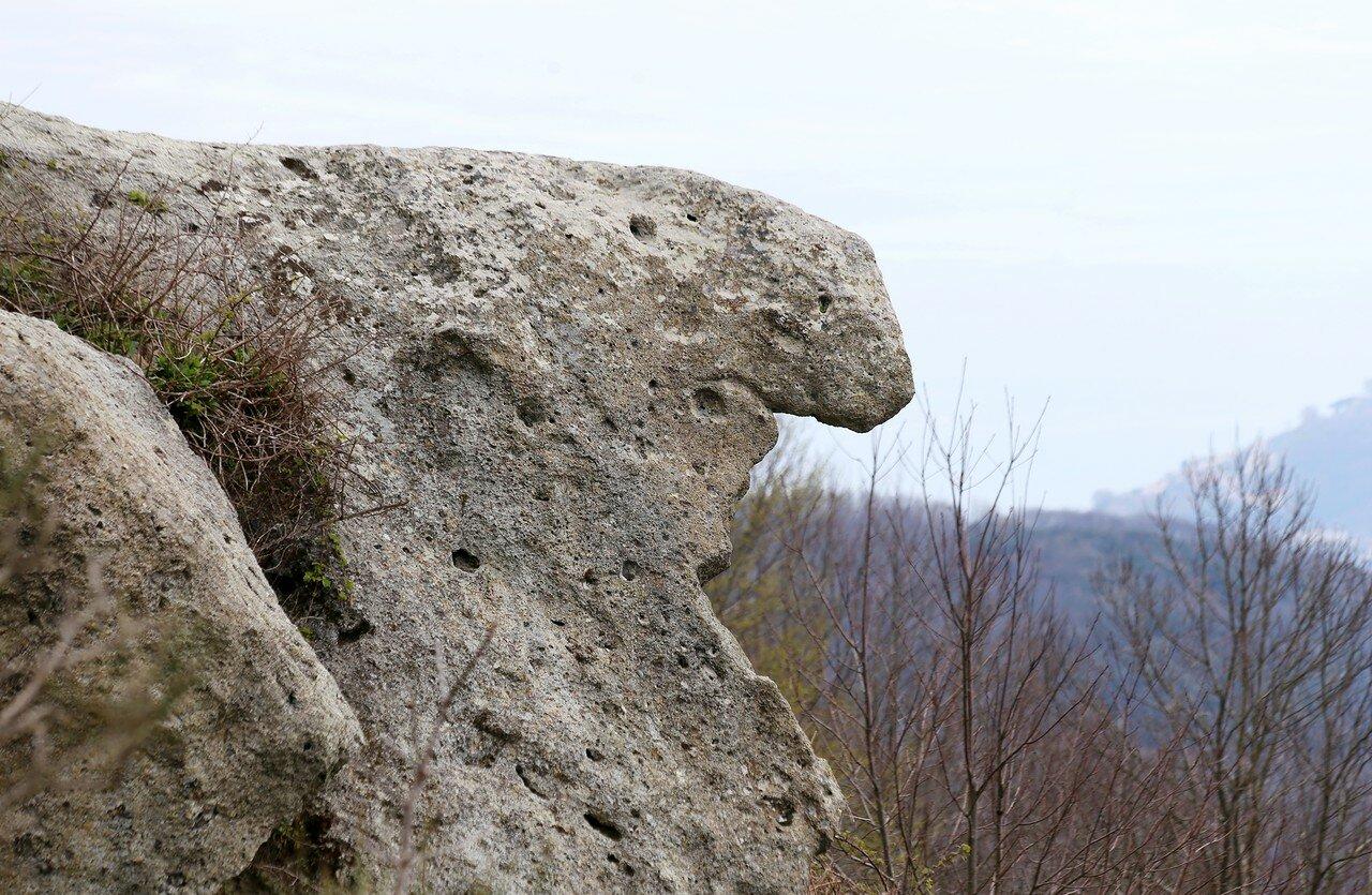 Искья, гора Эпомео.