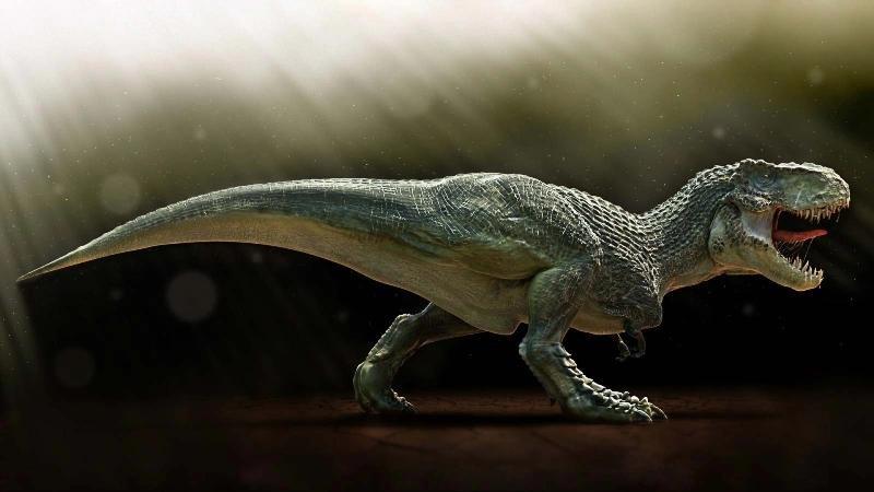 Крупнейшие тираннозавры были лишены перьев, доказали ученые