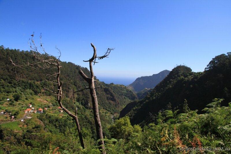 Мадейра, дорога к Сантане