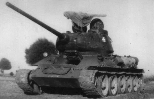 T3485Cyprus.jpg