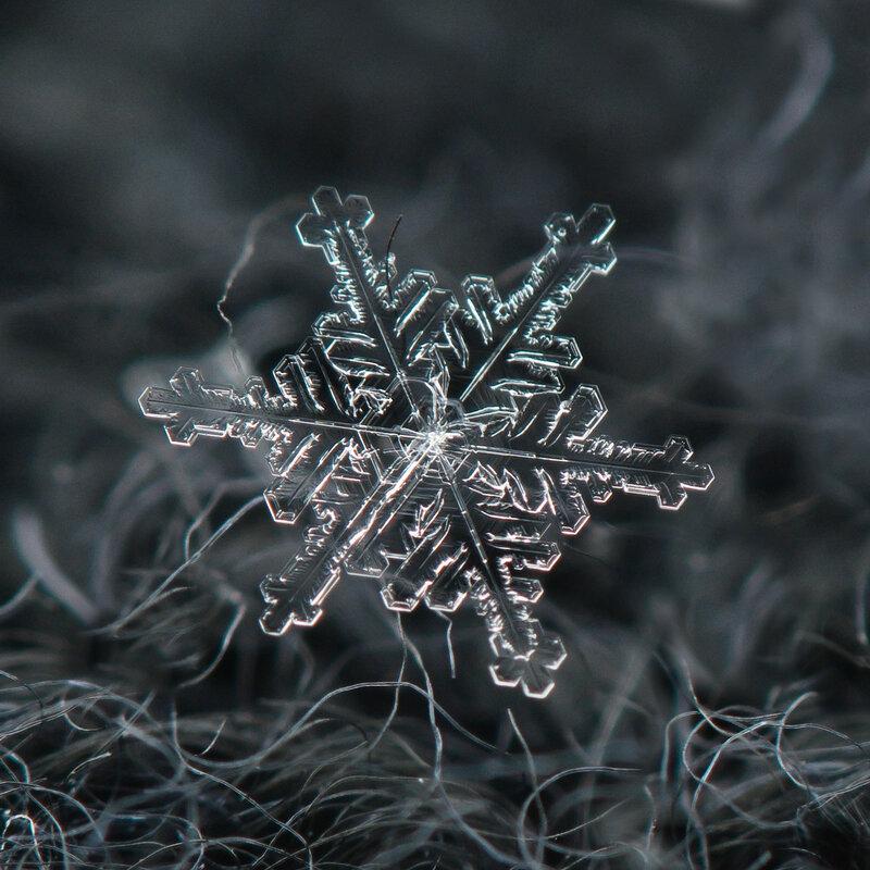 Снежный январь