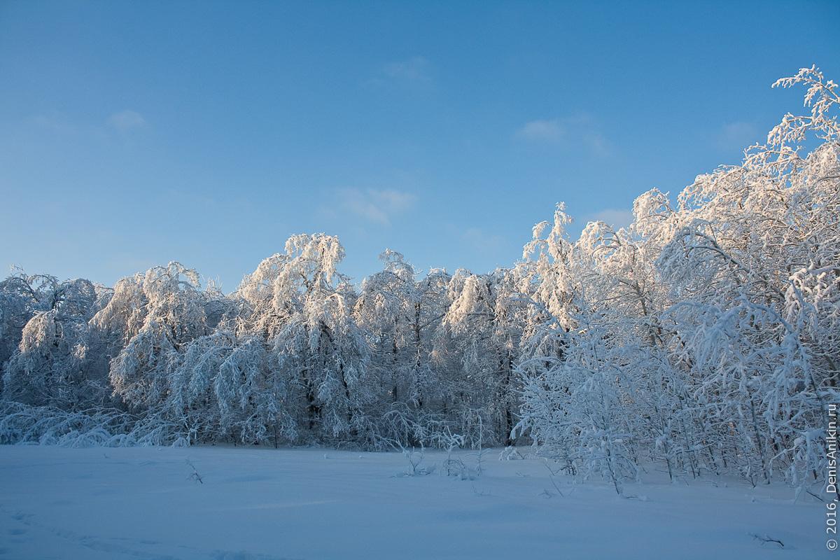 Зима на кумысной поляне 3