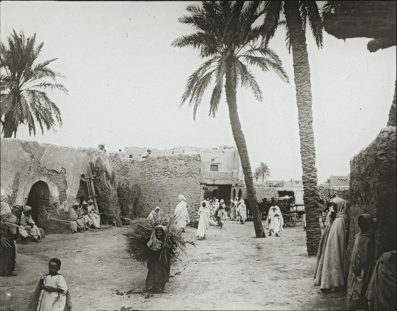 Сахара. Оазис Сиди Окба, город в пустыне