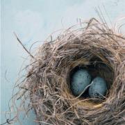Голубые яйца