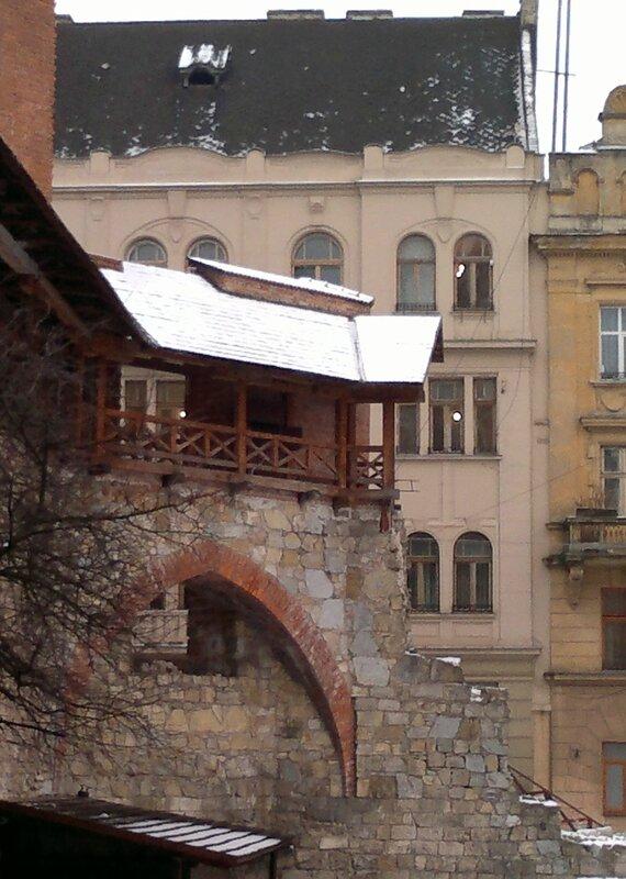 «Під Левом (Взимку 2013 го)»