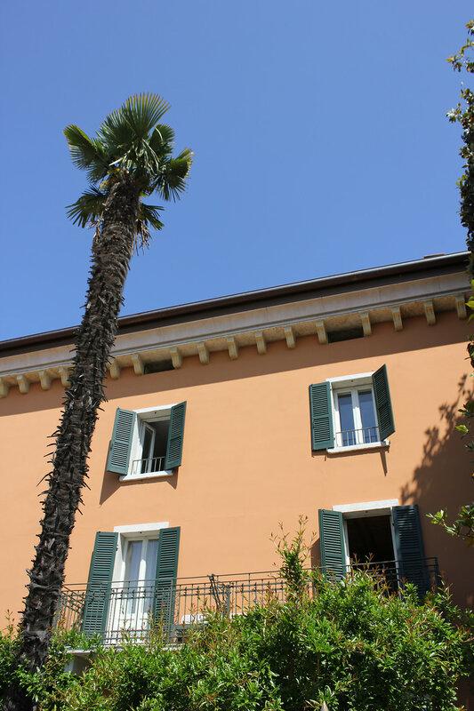 Окна и пальмы