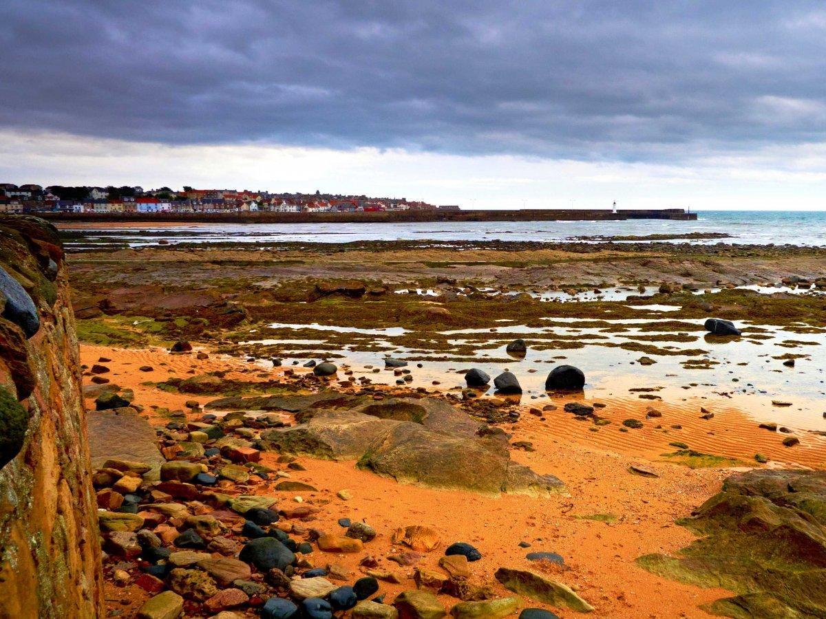 21. Во время отлива можно увидеть каменистый берег Ист-Ньюк в области Файф.
