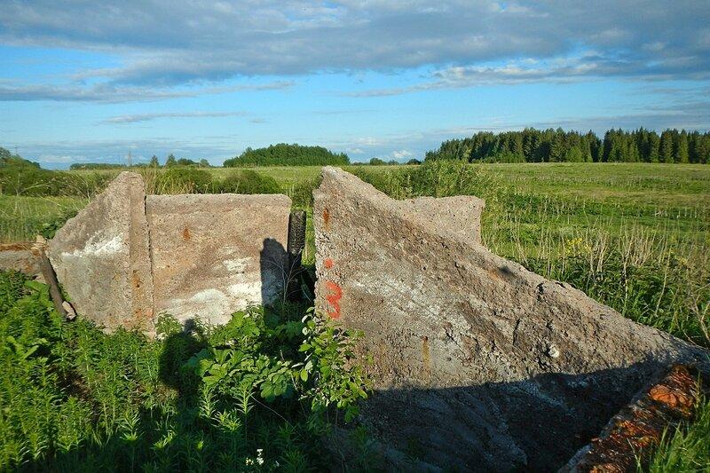 Заброшенное овощехранилище на дороге у Вахрушей: бетонные стенки и земляной пол, заросший травой