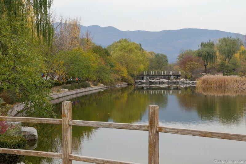 Ботанический сад, Пекин