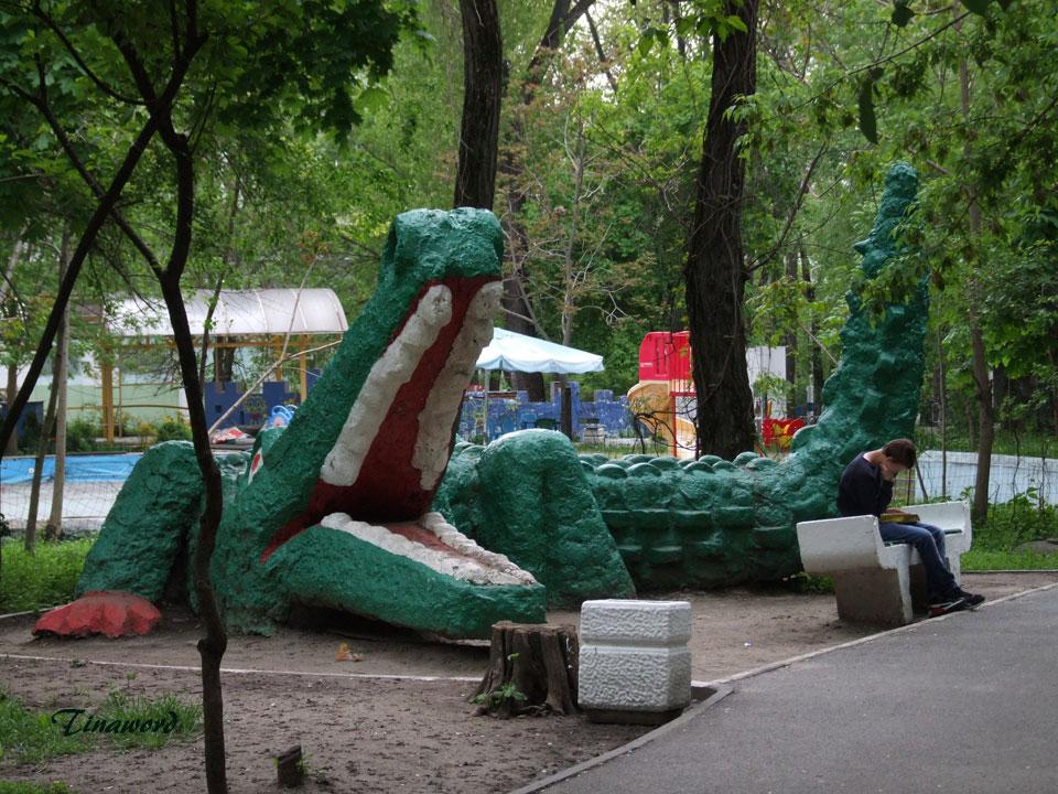 крокодил-5.jpg